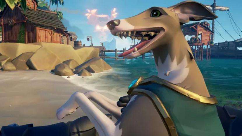Sea of Thieves heeft nu honden en je kan ze afschieten met je kanon
