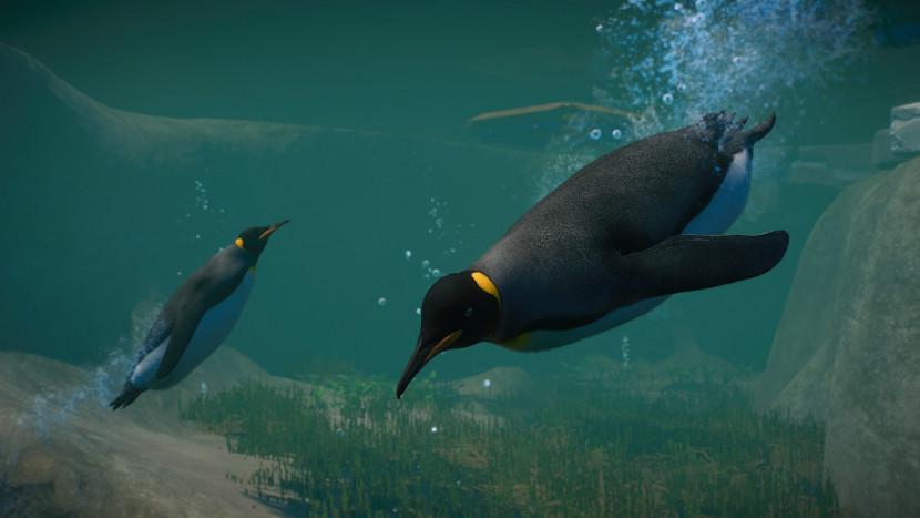 Aquatic DLC voegt pinguïns en meer toe aan Planet Zoo