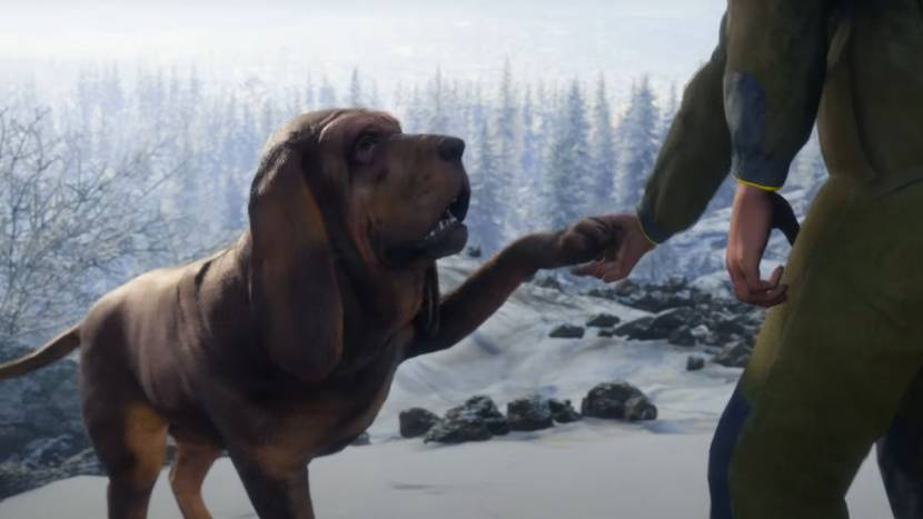 Jachthond als DLC voor theHunter: Call of the Wild