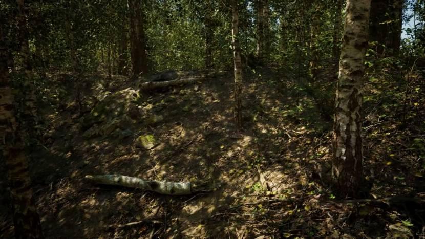 Zo realistisch kan een bos in Unreal Engine 5 eruit zien