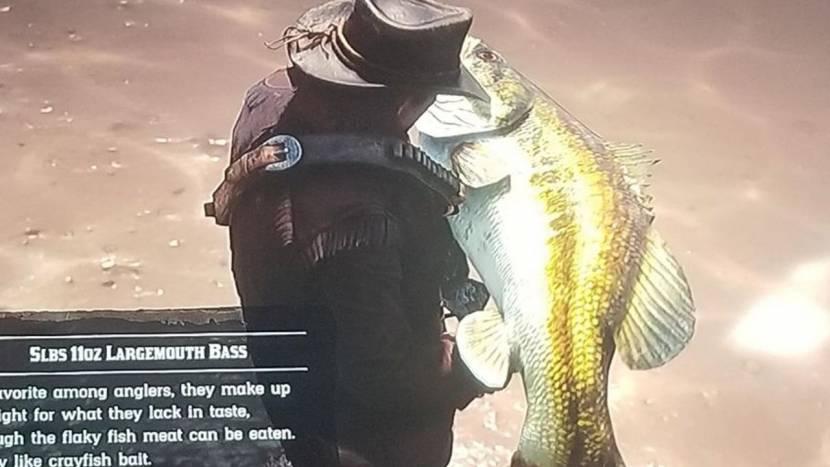 Bug zorgt voor gigantisch grote vis in Red Dead Redemption 2