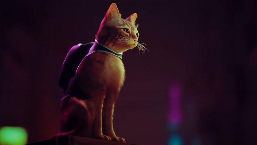 Een kat moet overleven in een robotwereld in Stray voor PS5
